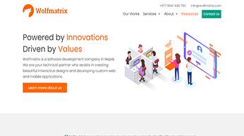 wolfmatrix software development company